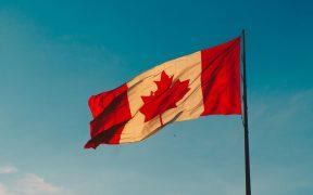 Immigrer au Canada : comment réussir sa recherche d'emploi